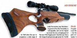 Пневматическая винтовка Daystate. Обзор.