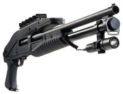 Hatsan Escort Aimguard Folding Stock